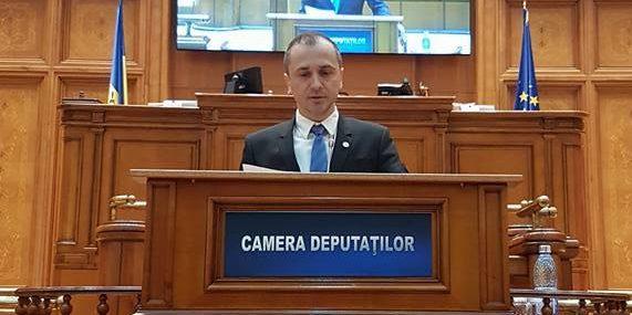Raport de Activitate Parlamentară: Ștefan Mușoiu